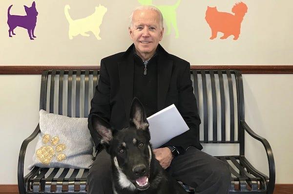 Joe Biden and his dog, Major.