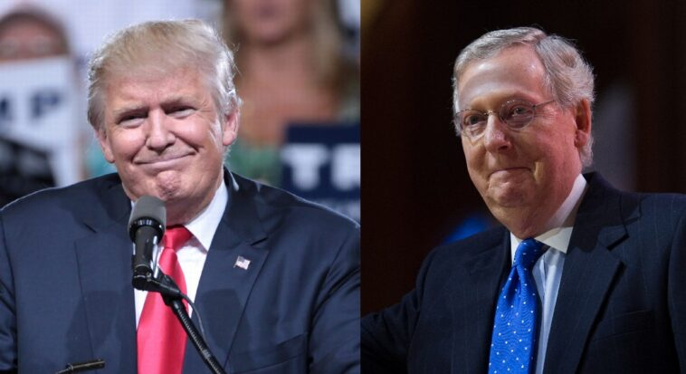 McConnell: I Would Support Trump If He Was The 2024 Republican Nominee...