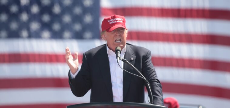 """Donald Trump Starting Social Media Platform. Will Be 'Ready within Months,"""" Adviser Says"""